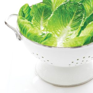 10 ways with lettuce