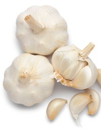 Edible garden: Growing garlic