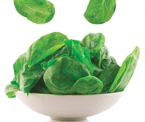 In season October: Spinach