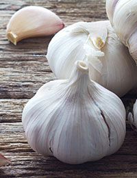 Garlic and a low-FODMAP diet