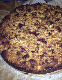 Blueberry cinnamon crumble cake