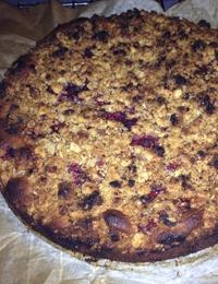 Gluten-free blueberry crumble cake