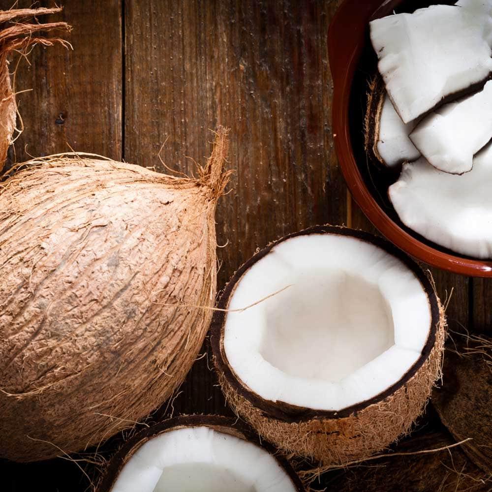 Coconut: the good oil?