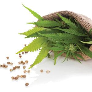 Label detective: Hemp seeds for sale