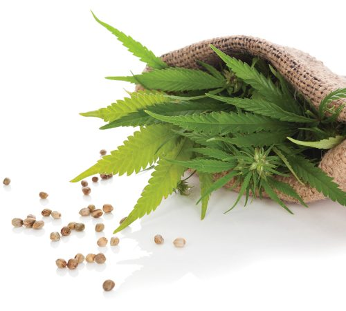 Label detective: Hemp seeds for sale