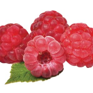 In season mid-summer: Raspberries, new potatoes, beetroot