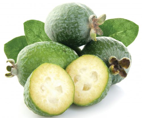 In season May: Feijoas