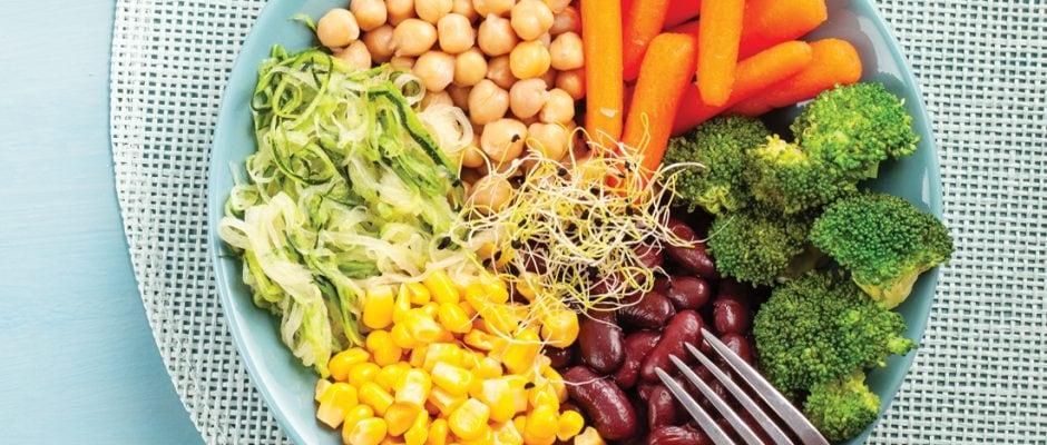 Ask the experts: Low-carb fibre intake