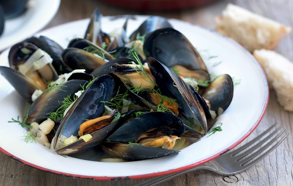 Mussels with fennel and cannellini beans in white wine broth