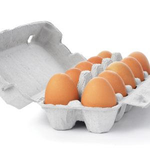 Healthy ageing: Why you need protein at every meal