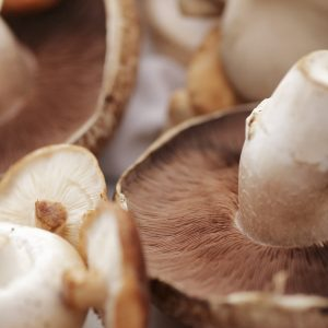 Do you have to wash mushrooms?