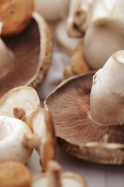 Ask Niki: Mushrooms
