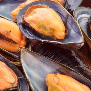 Ask the experts: Cholesterol in seafood