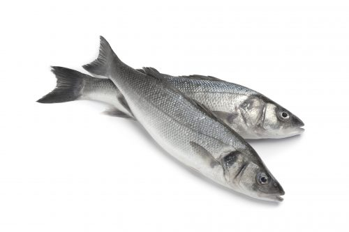 Ask the experts: Omega-3 from fish