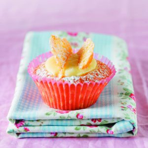 Basic butterfly cakes