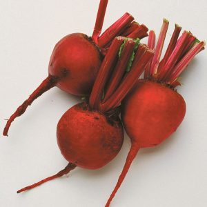 Edible garden: Growing beetroot