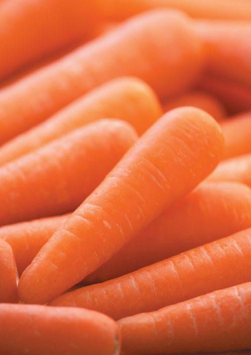 Edible garden: Growing carrots