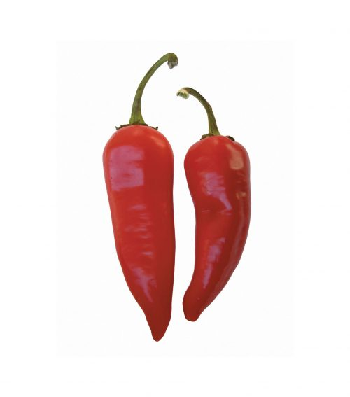 Fact or fiction: Spicy foods cause stomach ulcers