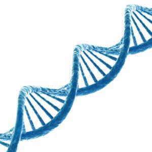 Future foods: Nutrigenomics