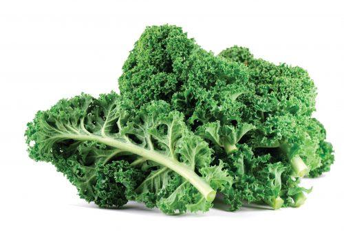 In season mid-winter: Kale