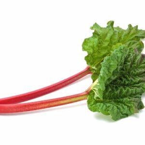 In season early winter: Rhubarb