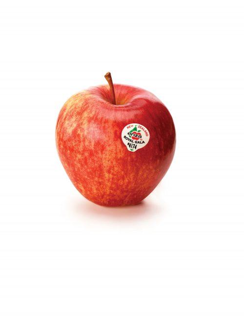 In season March: Apples
