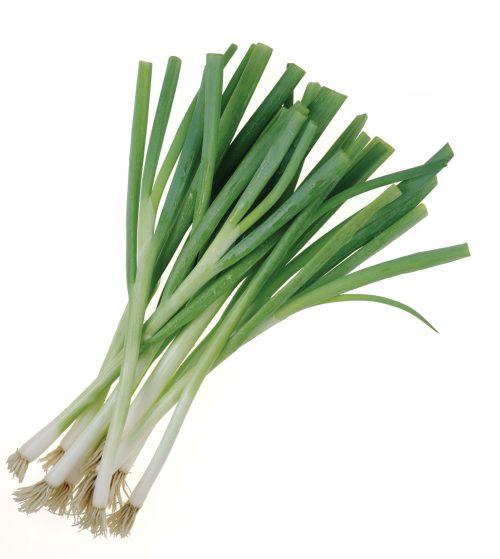 In season late autumn: Spring onions