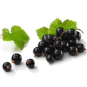 In season late spring: Blackcurrants