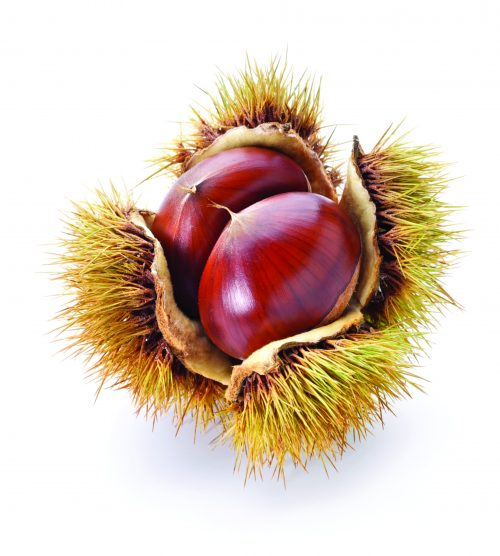 In season mid-autumn: Chestnuts