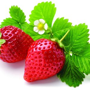 In season mid-summer: Strawberries