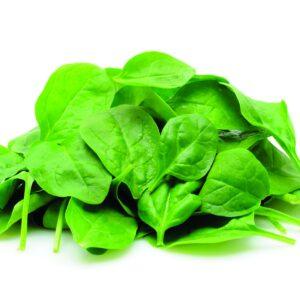 In season mid-winter: Spinach