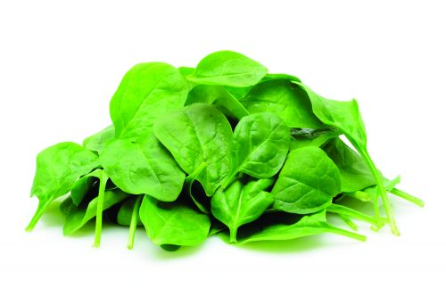 In season mid-winter: Spinach