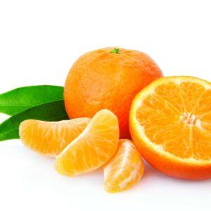 In season early winter: Navel oranges