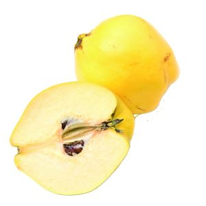 In season early autumn: Quince