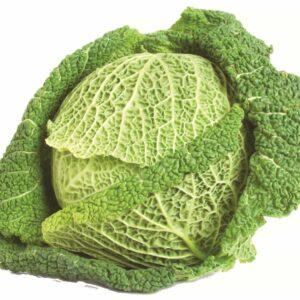 In season late autumn: Cabbage