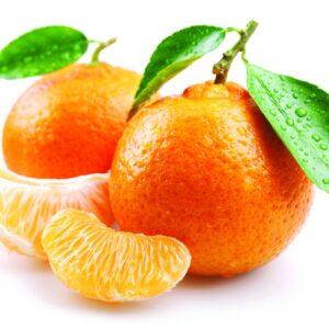 In season late autumn: Mandarins