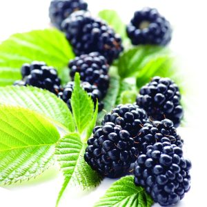 In season late spring: Blackberries