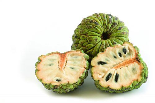 what fruit is in season cherimoya fruit