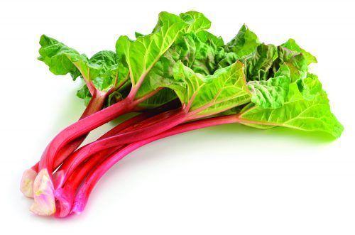 In season mid-spring: Rhubarb, parsnips
