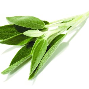 In season mid-spring: Sage