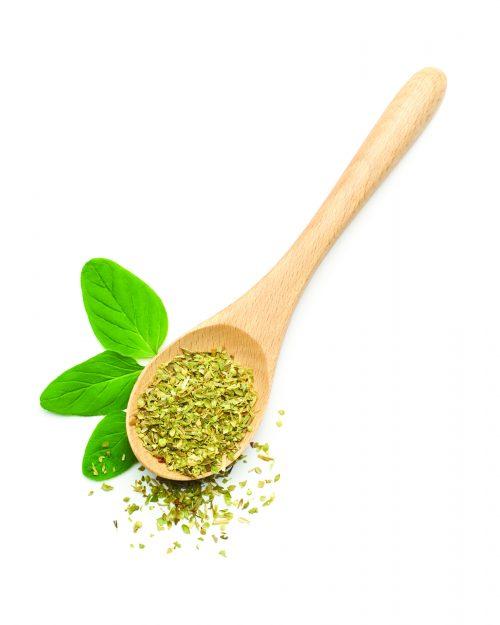 In season early spring: Oregano, bay leaves, kale, celery