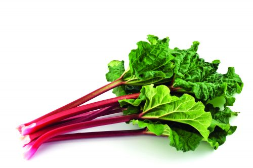 In season September: Rhubarb