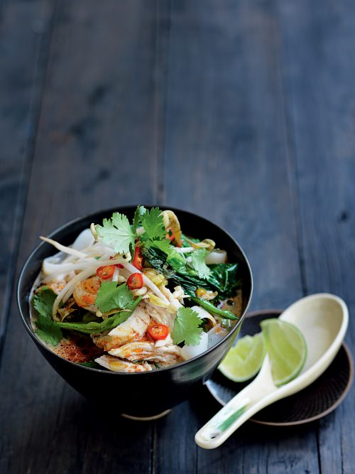 Red curry chicken noodle soup