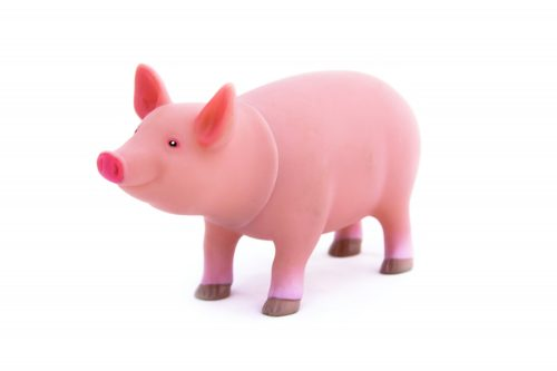 Shopping guide: Free-range pork