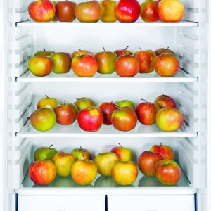 Tips to prolong the shelf-life of food