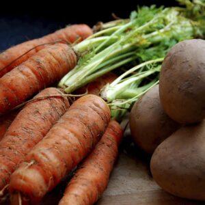 Vege gardening diary: Midwinter