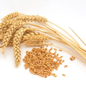 What does 'whole grain' mean?