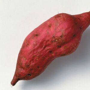 Why you should eat kumara