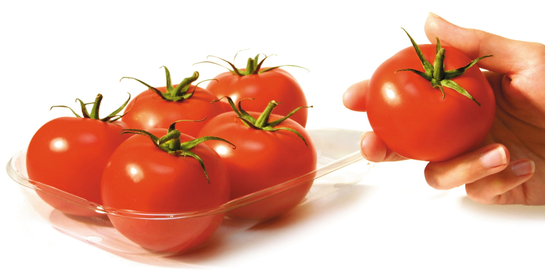 Image result for tomato eat