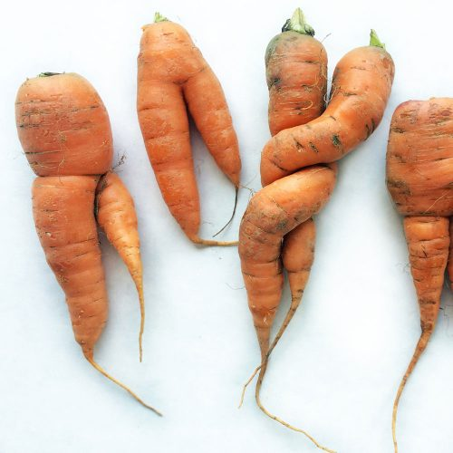'Ugly' produce sales to fight waste